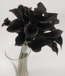 Black Flowers Background